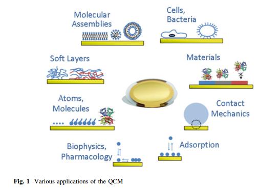 Figura 4: Sugestão de aplicações para QCM-D.<br/>FONTE: Johannsmann (2015).